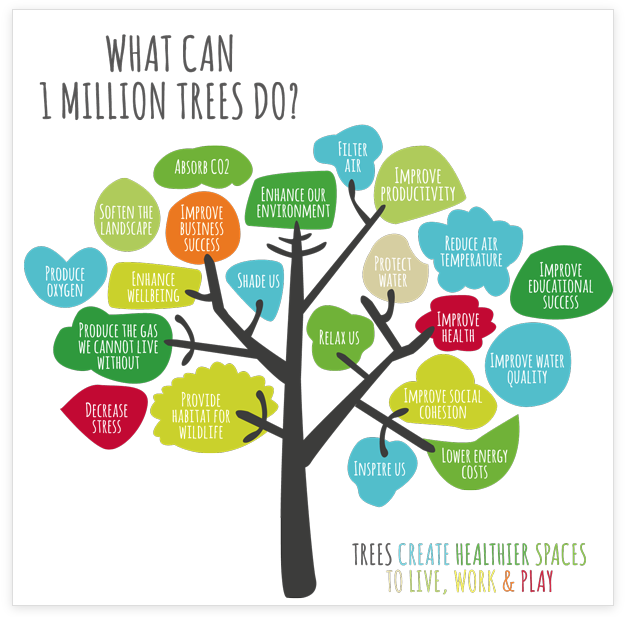 one million trees postcard copy