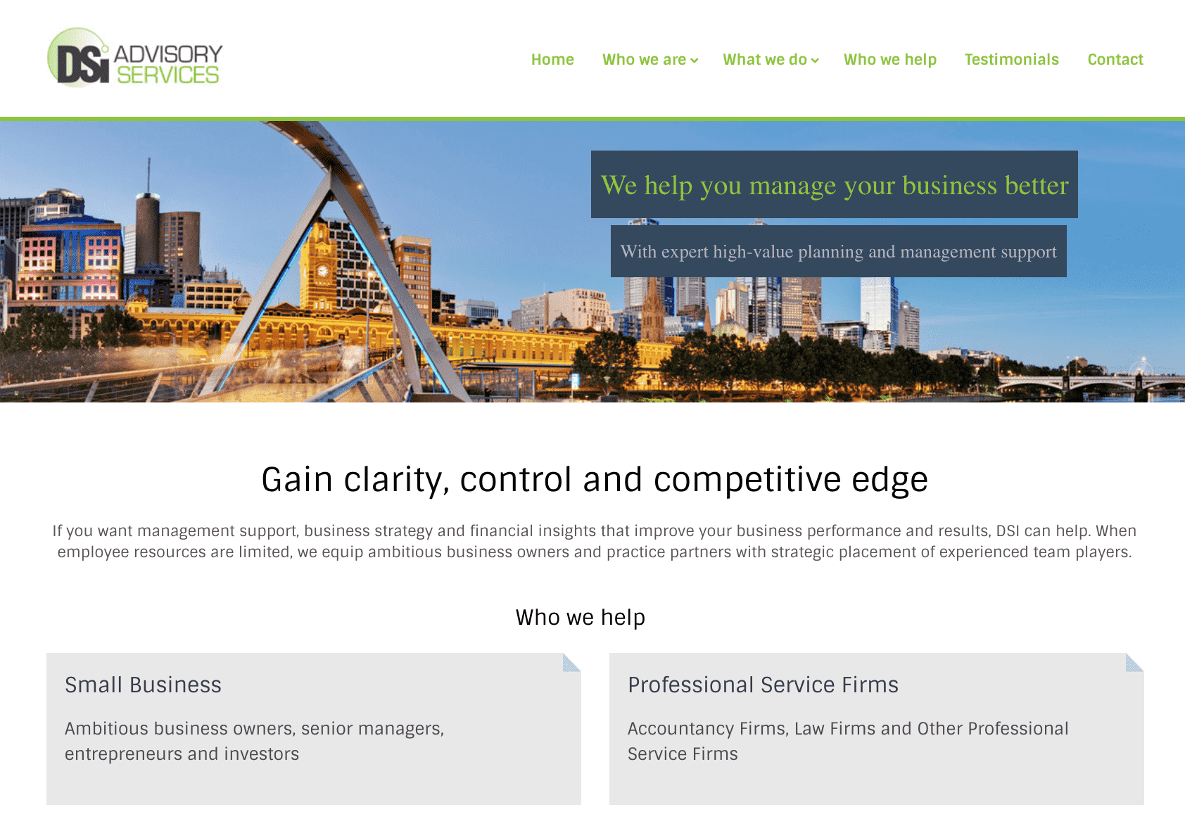 DSI financial copywriting website home page 1